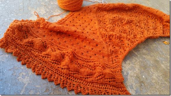 lace mayapple 11-2014