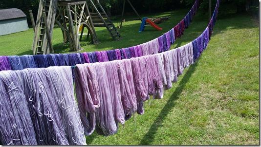 PurpleDay (1)