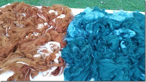 fiber-dyeing-7-31-15 (1)