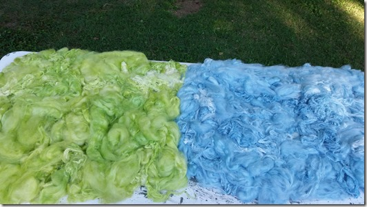 fiber-dyeing-7-31-15 (3)