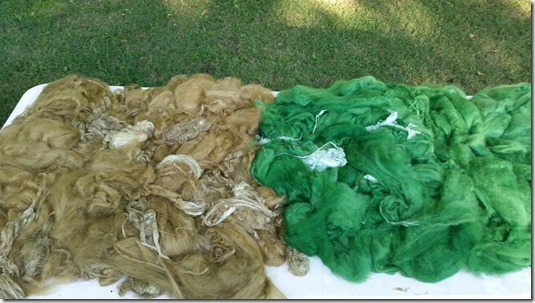 fiber-dyeing-7-31-15 (4)