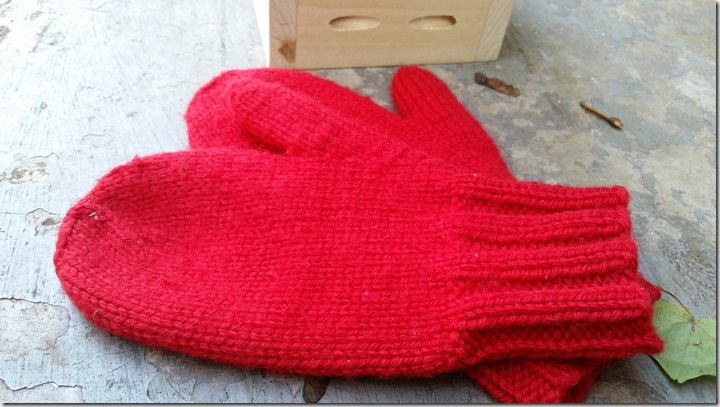 RED-MITTENS (4)
