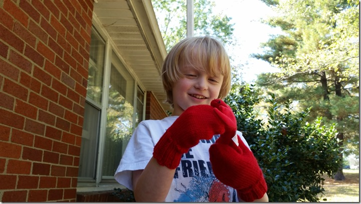 RED-MITTENS (7)