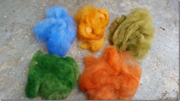 alpaca-dyeing-10-2015 (2)