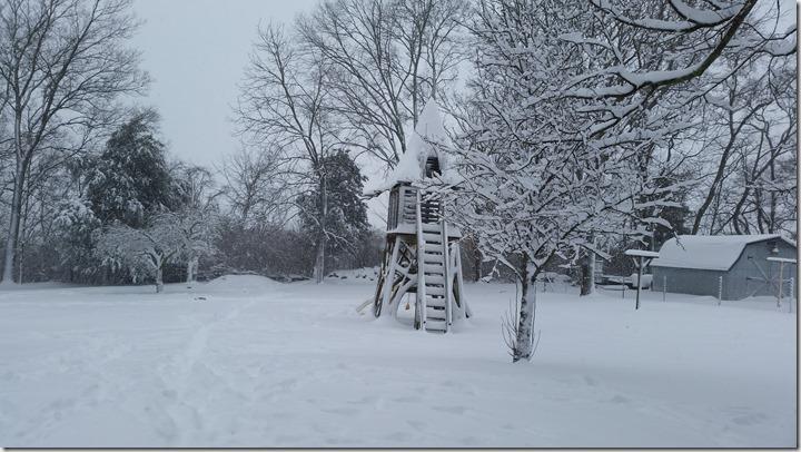 Blizzard of Jan.2016 (1)