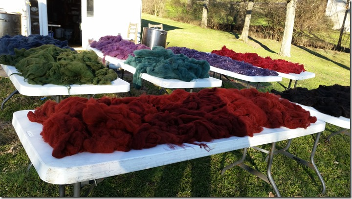 fiber-dyeing-02-04-16 (4)