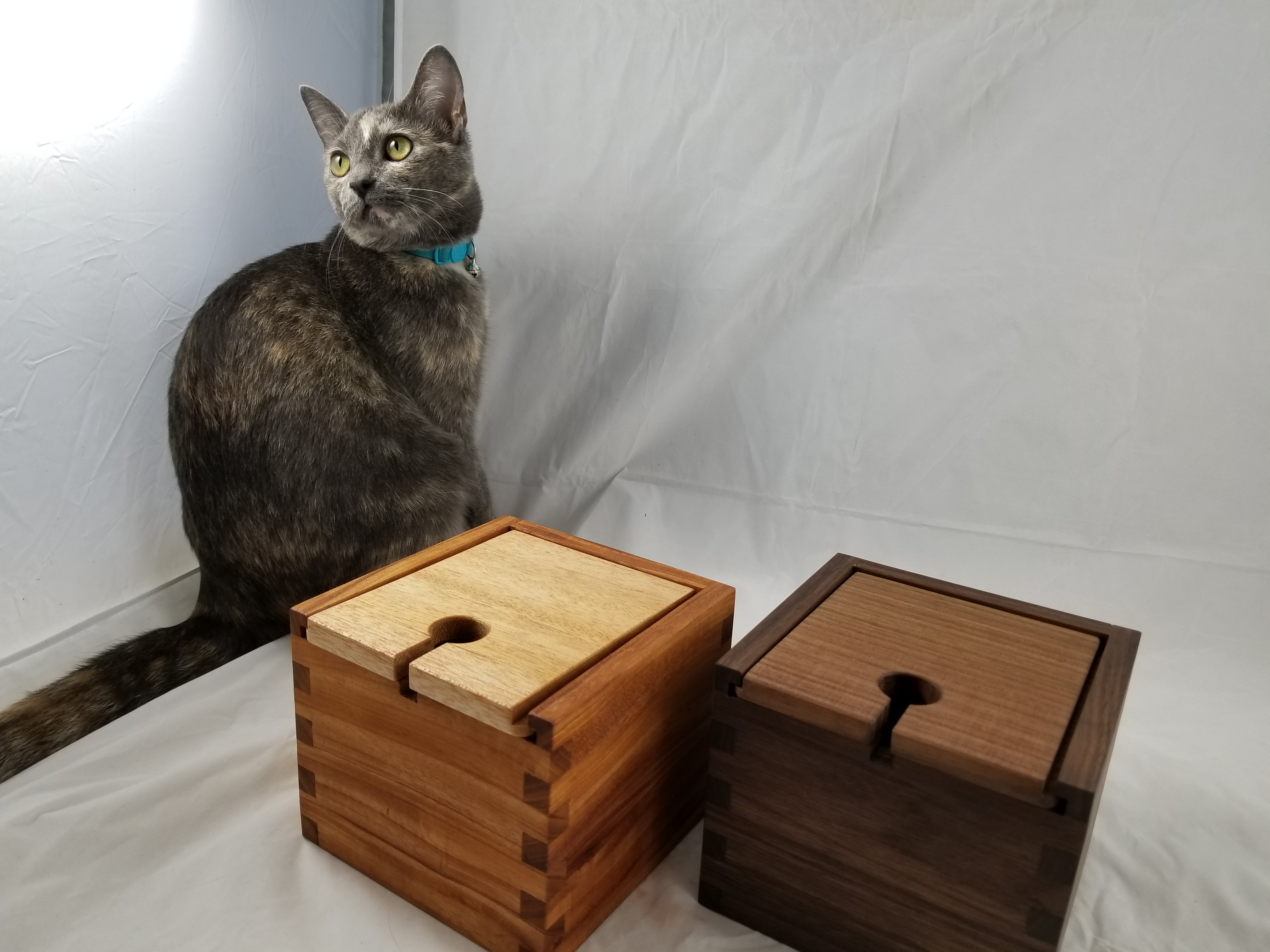 Mimi-lightbox (1)